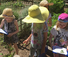 Gardening Club Open Day - Join us