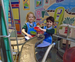Year 1 explore science in action