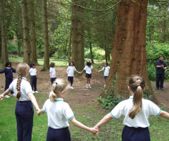Year 3 Learn From the Lickey Hills