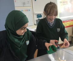 Year 5 Digestion Detectives