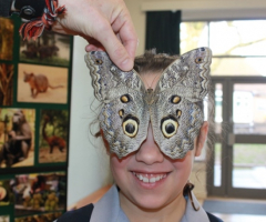 Going wild at the Rainforest Roadshow