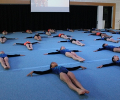 Gymnasts showcase talent and skill