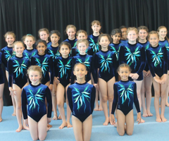 Prep gymnasts showcase skills