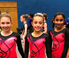 Gymnasts compete against West Midlands Schools