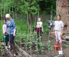 Join us at the EHS Allotment