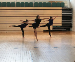 Dancers interpret Vivaldi's 'Four Seasons'