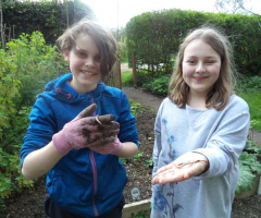 Junior gardeners start their work