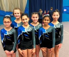 Successful season for EHS gymnasts