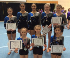 Excellent results for EHS gymnasts