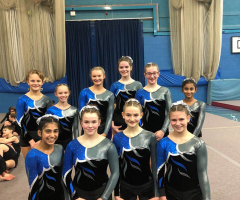 Gymnasts shine at regional competition