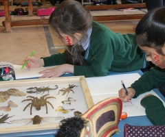 The Rainforest Roadshow comes to School