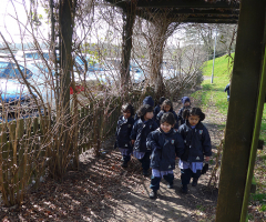 Exploration Walk for Nursery